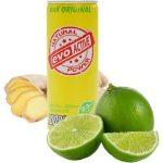 Evo Active aus Kokoswasser, Ingwer und Limette 250ml