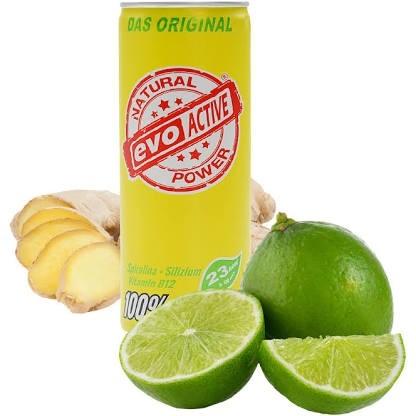 24x Evoactive á 250 ml aus Kokoswasser, Ingwer und Limette